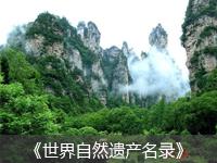 千赢国际qy142国家森林公园
