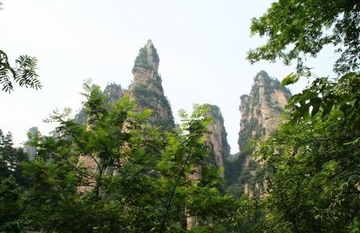 森林公园.jpg